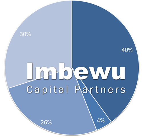 Investment Portfolio | Imbewu Capital Partners :: Private Equity and